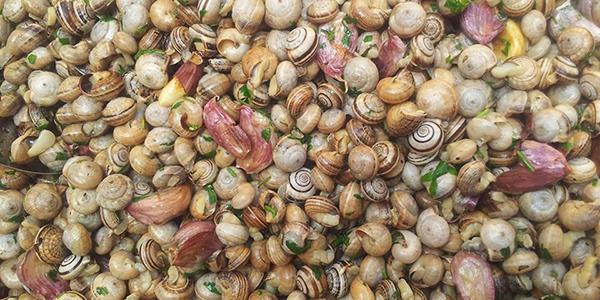 Babbaluci ru fistinu - Cucina di Sicilia